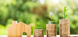 Стоимость оформления земли в собственность